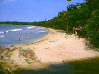 Costa Rica Impressions. Tortuguero. Webcam